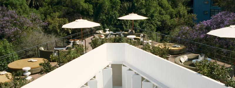 Los 10 restaurantes al aire libre más hermosos de la CDMX