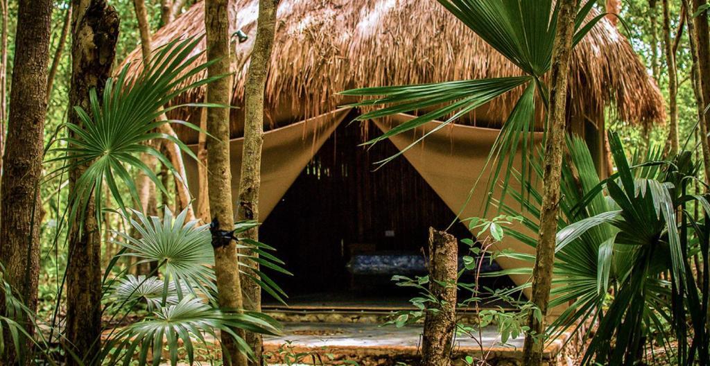 6 hoteles 'eco-friendly' en México que amamos (buenos, bonitos y a excelente precio)